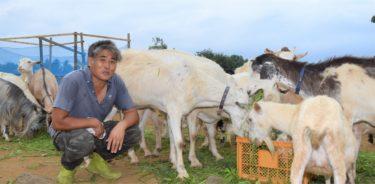 岐阜県でドラゴンフルーツ栽培や「山羊さん除草隊」に取り組む・渡辺祥二氏の農業観・農地観